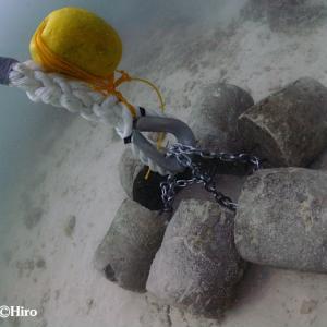 マジュロ環礁の洋上養殖ケージシステム新設置水中作業【Day2&3】