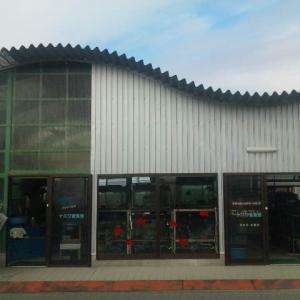 大和郡山市の金魚販売店、ナニワ金魚池を紹介!【画像あり】