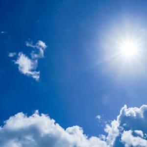 メダカが健康に育つ日光浴の効果とは