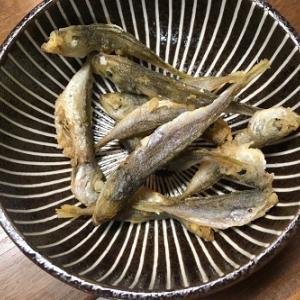 ちょっとサボッてましたの料理編 新鮮な魚はやはりうまいー!