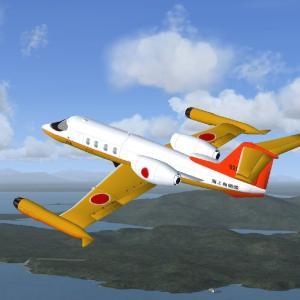 Flight Simulator の 機体
