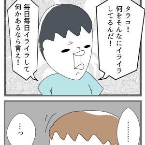 №62 憂鬱② あたるタラコ