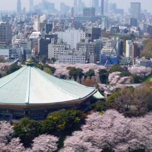 武道館で卒業式をする大学【2021・令和3年3月開催】東京都の大学