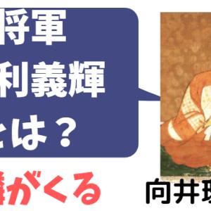 「麒麟がくる」向井理さんキャスト「足利義輝」とは?演じる孤独な将軍