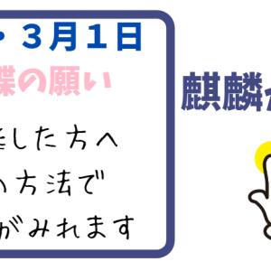 麒麟がくるの7話【動画フル視聴】方法!3月1日見逃した方必見!