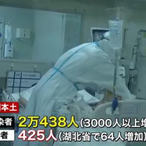 【新型肺炎】武漢での感染者、本当は39倍?「武漢から帰国した邦人の感染者割合が多すぎる」と中国で驚きの声★2