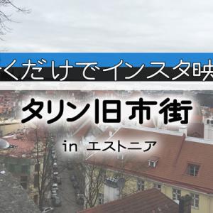 【タリン観光ガイド】インスタ映えする旧市街は歩くだけで楽しい町