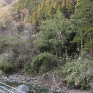 紅椿の湯(山梨県道志村)
