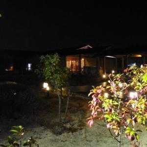 極楽湯 羽生温泉(埼玉県羽生市)※夜の利用