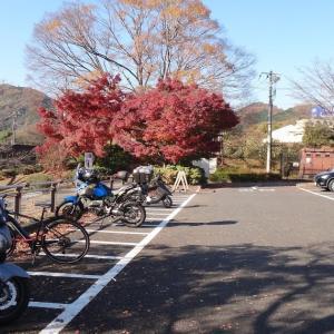 津久井湖城山公園から城山湖を一周する(相模原市緑区 12月上旬)