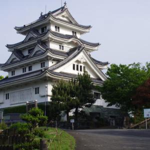川島城!徳島県吉野川市を見下ろすお城