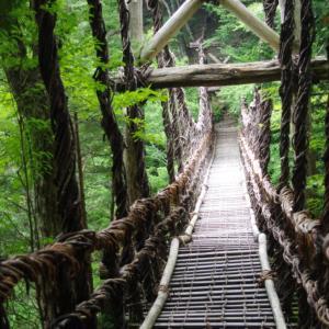 サルナシ作りで板と板の隙間が怖い!祖谷 (いや) のかずら橋!大人気観光地