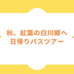 【名古屋発!日帰りバスツアー】秋、紅葉の白川郷へ行ってきた