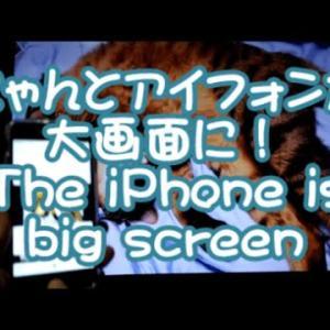 スマホiPhone純正ライトニングケーブルでテレビ/ディスプレイ