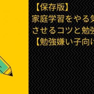 【保存版】家庭学習をやる気にさせるコツと勉強法【勉強嫌い子向け】