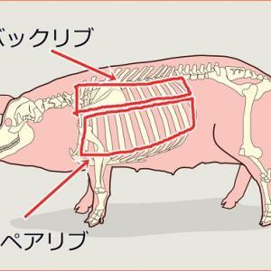 豚の骨付き肉のスペアリブやバックリブはカルシウム補給だけでなく歯磨き効果も🐷ただし、歯磨き効果は加熱した鶏の骨が抜群🐔