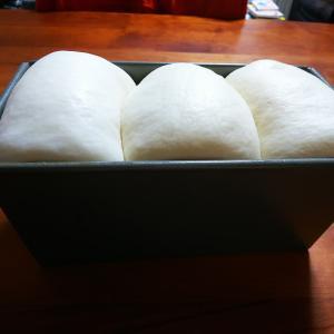 久しぶりの食パン作りと体幹トレーニング