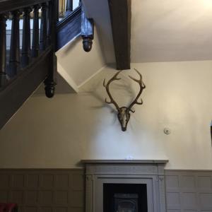 イギリスの家の特徴