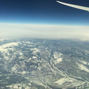 コロナ禍で帰国便を3回もキャンセルされた私が、どうやって日本に帰国できたか(1)