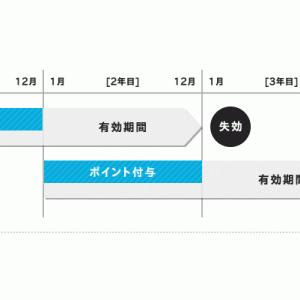 ANA VISA nimocaカード活用のマイラーは要注意!12月はnimocaポイント失効月【nimocaルート】