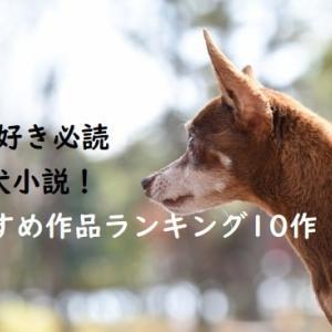 【2020年版】犬好き必読の犬小説! おすすめ作品ランキング10作