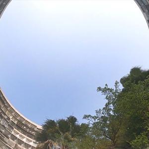 【台湾|高雄】女ふたり旅 2泊3日③  2日目 朝さんぽ|円筒形の団地がノスタルジック