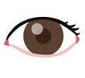 ギリシャ語の「眼」