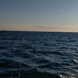 約30年ぶりの船釣りカレイは大漁