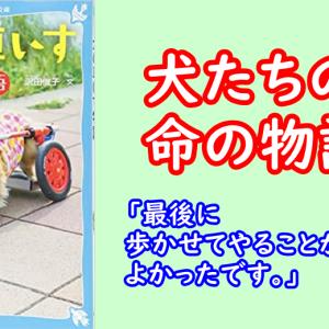 車いすは、犬だけでなく飼い主の希望でもある『犬の車いす物語』沢田俊子