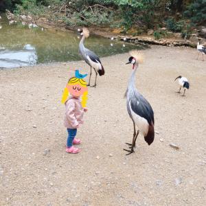 沖縄旅: 娘が大はしゃぎした動物テーマパーク