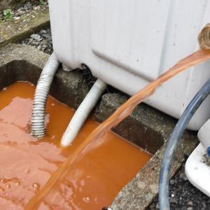 濁れ水が出るという井戸を掃除(松山市井門町)