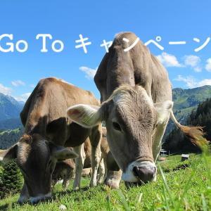Go To キャンペーン 日本政府が7月から国内旅行に大規模な支援!? 観光振興に1.7兆円!!