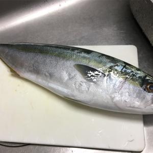 海鮮チラシ寿司を作りました
