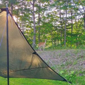 金〜土曜日キャンプをやってみた。 白老キャンプフィールドASOBUBA(白老町)