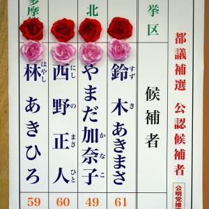 【小池圧勝の裏で】東京都議補選 自民党が全選挙区で勝利