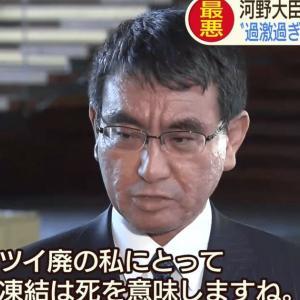 沖縄タイムス「河野太郎はTwitterで批判的な言動をする人をブロックすることも多く寛容さに欠ける」