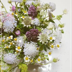 ナチュラルなお花たちとクーポンのお知らせ❁ 昭島フラワーアレンジメント教室 ラ・リュミエール