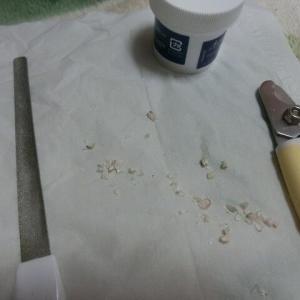 ポッキーの爪切り