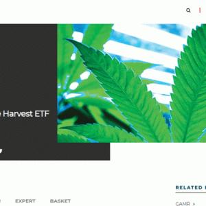 日本でも買える医療大麻株ETF(MJ)は案外いいかもね