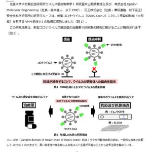 【ビッグニュース】新型コロナ感染抑制VHH抗体取得!