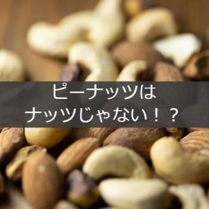 ピーナッツはナッツじゃないって本当?