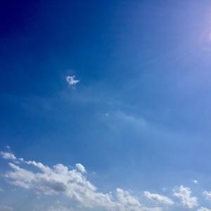 本日、最終日〜〜【 写ん歩クラブ写真展 】 その参。 笑って、楽しんで!