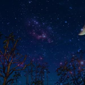 深夜のつぶやき 。。 【 秋分の日に向けて 】