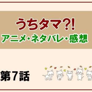 うちタマ?! アニメ7話の感想とネタバレ!モモと飼い猫の幸せ!