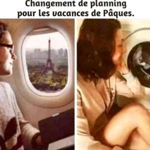 フランスの現状と今できること