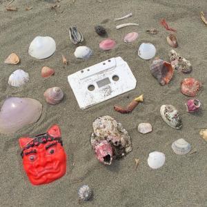 海岸美化団体等交流会の潜入ならず!開催が中止になりました