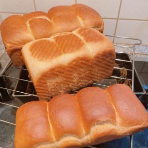 ハンガリーdeパン作り~そもそも粉が違っていたよ!!~