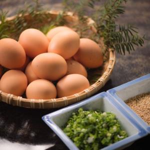 生卵の賞味期限ってどれくらい?腐ると見た目で判断できる?