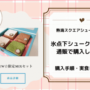 熱海「氷点下シュークリーム」を通販で購入!実食レビューや購入手順を画像で!