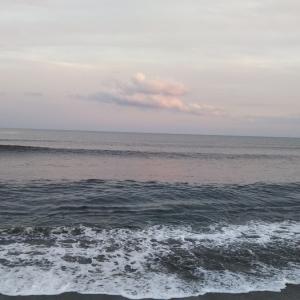 2019年、秋。サーフ釣行2回目。〜風になれ!!〜人も魚も傷つかない海へ〜